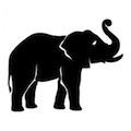 elefante-1_xl