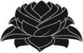 flor-de-lotus-1_xl