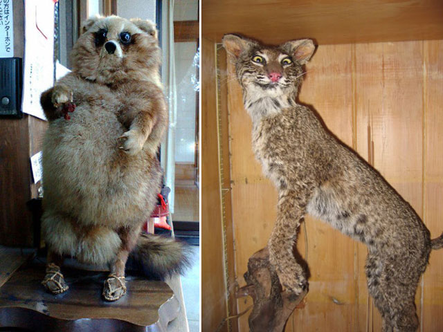 terrible_taxidermy_9