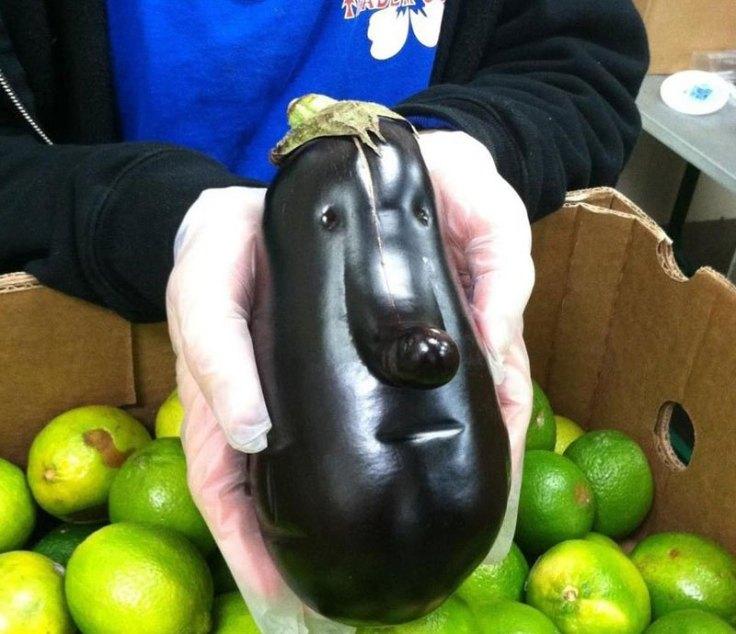 eggplant-face
