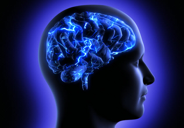 10a-brain-function_20049241_SMALL